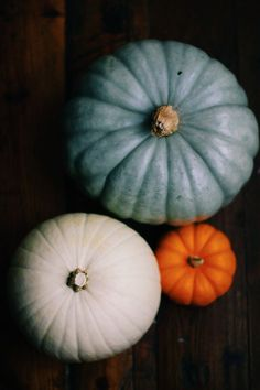 blue white pumpkins | The white and blue pumpkins ended up working out best with these ...