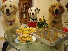 christmas cookies for the dogs