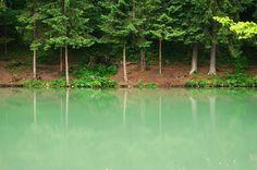 Cutkovska dolina / Liptov  W H I T E D O G t r a v e l W R A P www.whitedog.sk  #whitedogsk #whitedog #cutkovskadolina #ruzomberok #liptov #slovensko #slovakia #lake #jazero #priroda #wildnature #naturephotography #dnesxestujem #cestujeme #pureslovakia #insta_svk #thisisslovakia #jar #farby #colours #canon_official #canong7x