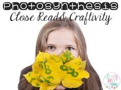 Photosynthesis Craftivity-  Students visually show the process of photosynthesis and explain it as a recipe!