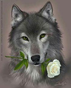 Wolf with a beautiful white rose Anime Wolf, Beautiful Creatures, Animals Beautiful, Animals And Pets, Cute Animals, Fantasy Wolf, Wolf Spirit Animal, Wolf Stuff, Wolf Wallpaper