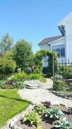 Rosebue Garden, Plants, Pictures, Photos, Garten, Flora, Plant, Lawn And Garden, Outdoor