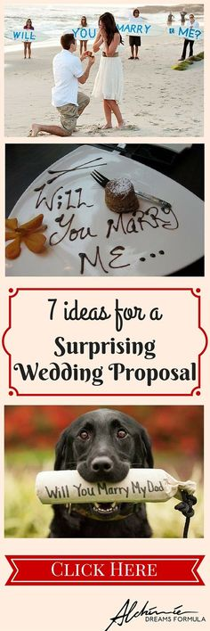 Wedding Designs Wedding Proposal: When Everything Begins - Looking for inspiration for a stunning wedding proposal? Here are 7 great, selected ideas plus some very useful advice! So read and then go buy the ring! Proposal Photos, Romantic Proposal, Perfect Proposal, Romantic Weddings, Dog Proposal, Dog Wedding, Wedding Couples, Wedding Engagement, Dream Wedding