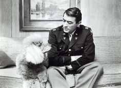 "Presenting the poodle Monsieur Cognac featured in the movie ""Wild and Wonderful"" (1964) with Gregory Peck"