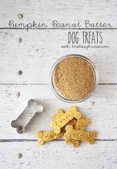 Homemade Pumpkin Peanut Butter Dog Treats ~~ Yield: Makes 5-6 dozen / Ingredients: 2 cups white rice flour - 1 cup wheat germ - 7.5 oz can pumpkin - 1/2 cup water - 1/2 tbsp cinnamon - 1 tbsp vegetable oil - 1 tbsp honey - 1 tbsp peanut butter