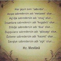 Hz Mevlana