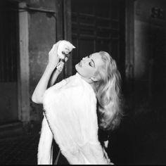 Today is the birthday of Federico Fellini. What's your favourite director /film ? #anitaekberg #ladolcevita #italiancinema #italy #film #cat #cats #kitten #gato #neko #beautiful #federicofellini