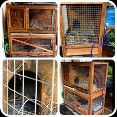DIY two story rabbit hutch or bunny hutch; Hubbie made it from scratch.