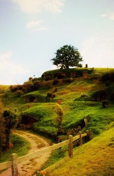 The Shire. I want to live here!!!! I want to be a hobbit!