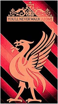 Best Football Team, Liverpool Football Club, Liverpool Fc, Red Day, Embroidery Patches, Soccer, Iphone Wallpapers, Rocks, Converse