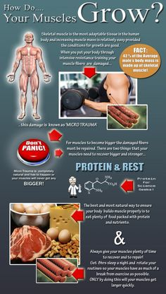 Facts About Muscle Growth #muscles #infographics