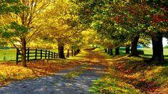 Country Road sånt som jag vill fota ju:)