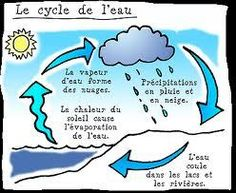 Science the water cycle Water Cycle Craft, Water Cycle For Kids, Water Cycle Model, Water Cycle Project, Water Cycle Activities, Science Activities, Science Ideas, Volcano Science Experiment, Easy Science