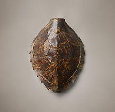 Cast South Seas Turtle Specimens Collection | Restoration Hardware