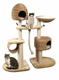 nobby 62049 0223 limbo cat scratching post brown beige by. Black Bedroom Furniture Sets. Home Design Ideas