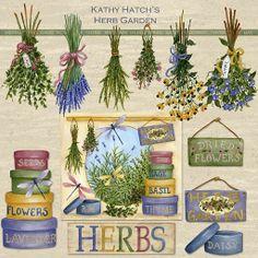 hierbas #plantas #medicinales