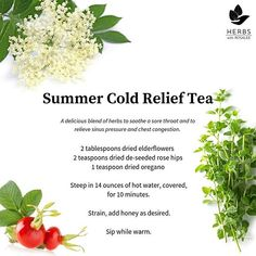 I've got a little summer cold. 😔 🍵 Luckily it's been fairly mild, probably due to all the herbs I've been taking! 🌿 My biggest complaint… Herbs For Health, Health Heal, Relieve Sinus Pressure, Dental Fillings, Grapefruit Seed Extract, Slippery Elm, Natural Antibiotics, Feeling Sick, How To Dry Oregano