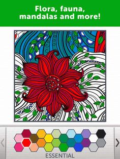 Adult Coloring Book - Color Therapy Pages & Stress Relief Coloring Book for Adults by Adult Coloring Book Apps, LLC
