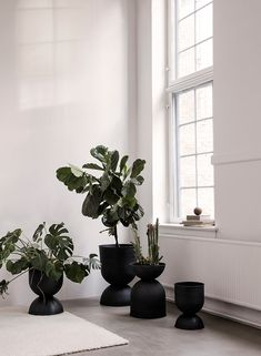 Ferm Living's Hourglass pot elevates your plants to new heights. The pot, as the name suggests, has an unusual hourglass shape. Small Plants, Potted Plants, Indoor Plants, Plants In Pots, Indoor Plant Decor, Succulent Plants, Water Plants, Indoor Garden, Indoor Outdoor