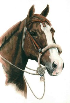 Horse in Watercolor.  Original Artwork.