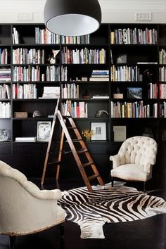 Black wall book case