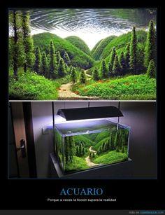 ACUARIO - Porque a veces la ficción supera la realidad Gracias a http://www.cuantarazon.com/ Si quieres leer la noticia completa visita: http://www.estoy-aburrido.com/acuario-porque-a-veces-la-ficcion-supera-la-realidad/
