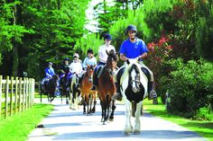 Camping***** Le Domaine des Ormes - Epiniac #Camping #Bretagne #Dol #Fun #Equitation #Vacances