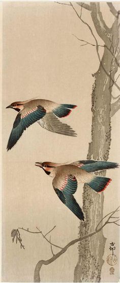 Ohara Koson / Waxwings in Flight (Japanese) 小原古邨