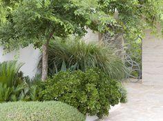 Peter Fudge creates gardens that connect in deep and meaningful ways. Peter has been designing beautiful gardens since Every garden design has… Modern Garden Design, Contemporary Garden, Landscape Design, Contemporary Style, Bush Garden, Garden Gates, Back Gardens, Outdoor Gardens, Australian Native Garden