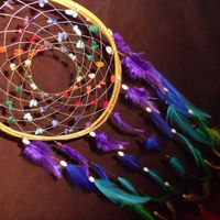 Custom Dream Catcher- Chakra Love- White Willow Dream Catcher with a Whole Rainbow of Feathers