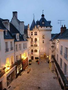 Loches, France ~ A beautiful small town. of Paris, 2 hours 42 min drive km S. of Amboise) Places Around The World, Oh The Places You'll Go, Places To Travel, Around The Worlds, Wonderful Places, Great Places, Beautiful Places, Monaco, Belle France