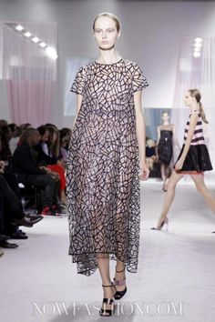 Ready To Wear Spring Summer 2013 Paris
