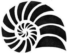 shell stencil - Google Search: