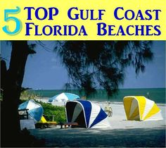 5 Top Gulf Coast Florida State Parks with Beaches. Your kids will love to play on one of these beaches during your family vacation or road trip. Also, take along a tent to camp right near the ocean.