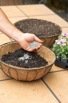 How to Plant a Beautiful Hanging Basket in Just 20 Minutes More How to do it STEP 1 Line And Fill Ba Plastic Hanging Baskets, Plants For Hanging Baskets, Hanging Flower Baskets, Flower Planters, Garden Planters, Planter Pots, Hanging Plants Outdoor, Diy Hanging, Hanging Planters