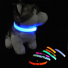 Nylon Led Light-Up Puppy Leash Night Safety Collar Flashing Light Leads Luminous Pet Cat Dog Collar Pet Dogs, Dog Cat, Pets, Nylons, Led Dog Collar, Cat Collars, Animal Jewelry, Glow, Dog Accessories