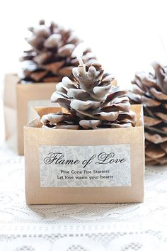 Not only is this adorable, but it's practical, too. These pinecones are dipped in beeswax, which helps get the flames rolling in the fireplace on a cold winter night.
