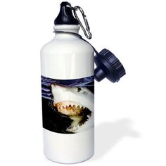 3dRose Great White, Sports Water Bottle, 21oz