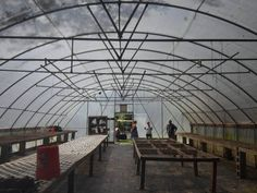 Commercial Greenhouse, Image
