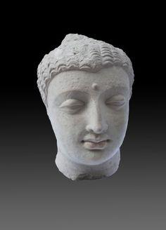 Head of Buddha Shakyamuni circa 4-5th Century Hadda region stucco H26cm