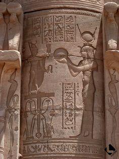 Denderah, temple d'Hathor (Période ptolémaïque et romaine) - Décor du Mammisi d'Auguste, Hathor jouant du tambourin