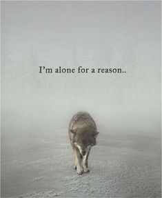 Quotes 'nd Notes - Im alone for a reason. The reason… - Im Alone Quotes, Loner Quotes, Reality Quotes, Mood Quotes, Forever Alone Quotes, Better Alone Quotes, Love Nature Quotes, Lone Wolf Quotes, Mots Forts