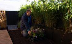 Loungen op 't dak: ontwerp - Eigen Huis en Tuin
