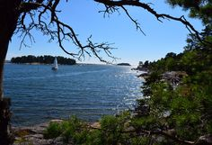 Saaristo on Espoon helmi. The archipelago with its water bus service is the crown jewel of Espoo. #saaristo #Espoo #archipelago #Finland