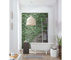 Elevate your space with the Komar Ivy and Stone Wall Mural , a contemporary graphic that showcases natural textures. This mural features a stone. Ivy Wall, Classic Theme, Green Curtains, Vine Design, Home Wallpaper, Southwestern Style, Off The Wall, Panel, Home Look