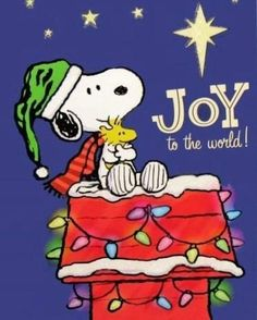 Peanuts Christmas, Noel Christmas, Christmas Countdown, Christmas Greetings, Christmas Humor, Snoopy Images, Snoopy Pictures, Peanuts Snoopy, Charlie Brown Und Snoopy