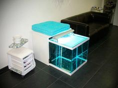 Fish Pedicure, Spa, Garra, Aquarium, France, Nail, Furniture, Home Decor, Hutch Decorating