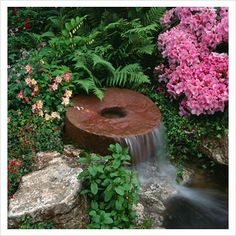 GAP Photos - Garden & Plant Picture Library - Millstone waterfall water feature surrounded by ferns, Rhododendrons and Aquilegia - GAP Photos - Specialising in horticultural photography
