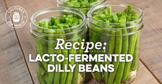Lacto-fermented Dilly Beans Recipe: made 1/2raw & 1/2blanched. We'll see which is the winner...