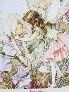 Vintage Blossom Fairy Illustrations by PeachyChicBoutique on Etsy